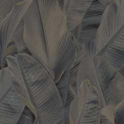 Carta da parati foglie di banano grigie Lymphae 17808
